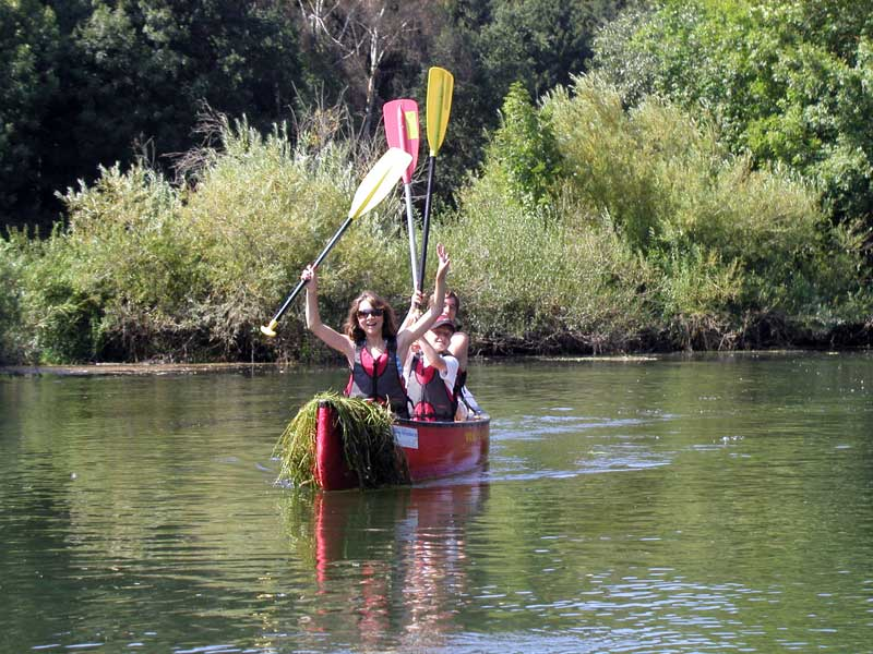 kanadier-fahren-kanu-paddeln-auf-dem-bodensee