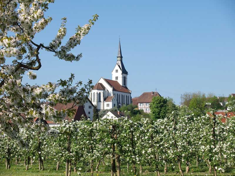 lippertsreuthe-im-fruehling