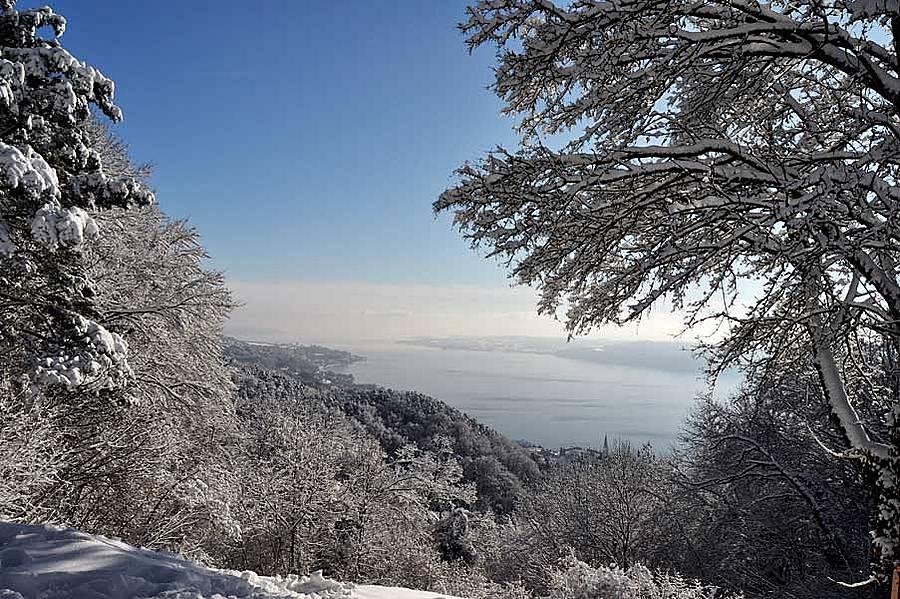 winterimpressionen-urlaub-auf-dem-bauernhof-am-bodensee